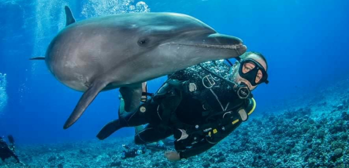 https://tahititourisme.com/wp-content/uploads/2017/08/Archimedeexpeditionsphotocouverturure_1140x550px.png