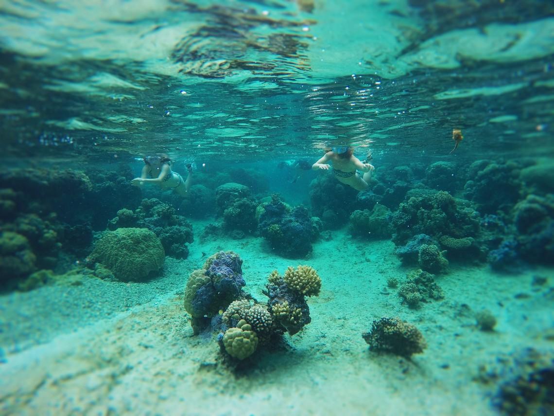 https://tahititourisme.com/wp-content/uploads/2017/08/Bora-Bora-Reef-Discovery-2.jpg