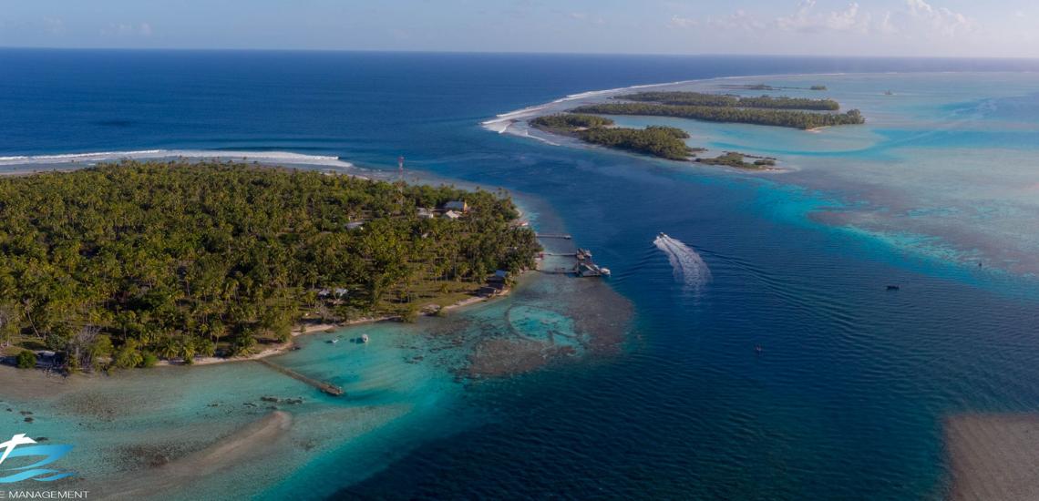 https://tahititourisme.com/wp-content/uploads/2017/08/Tahiti-Dive-Management.png