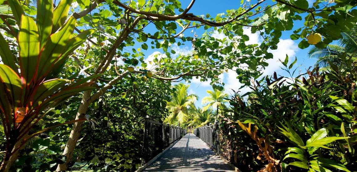 https://tahititourisme.com/wp-content/uploads/2017/08/bridge-over-the-lake_16581030880_o_600.jpg