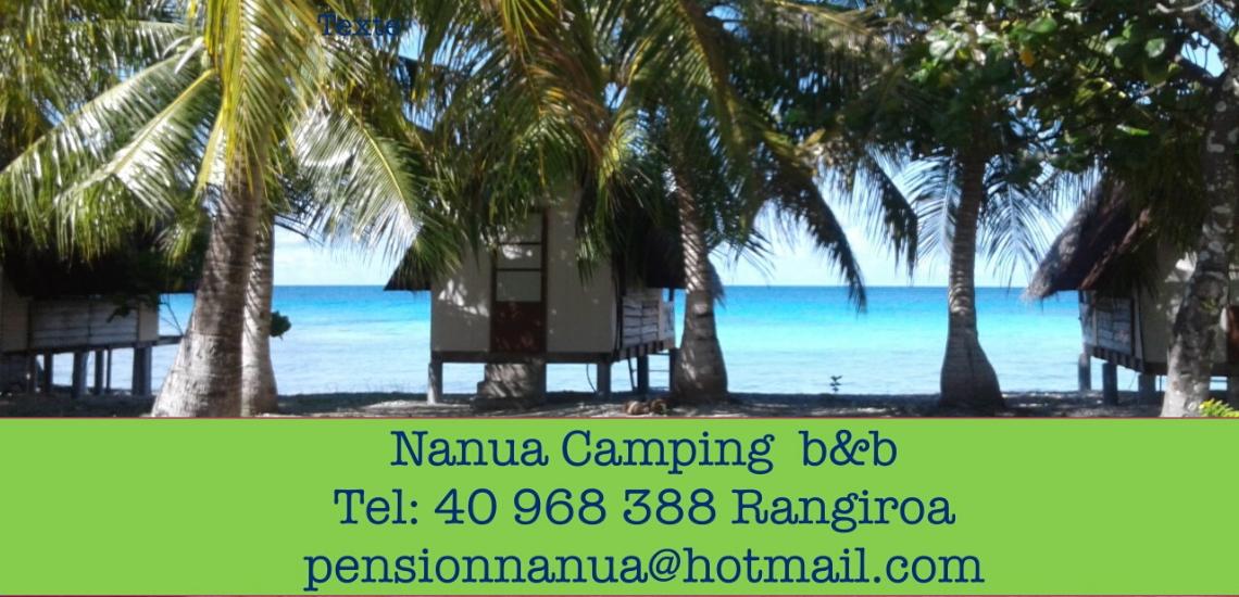 https://tahititourisme.com/wp-content/uploads/2017/08/nanuacamping_1140x550.png