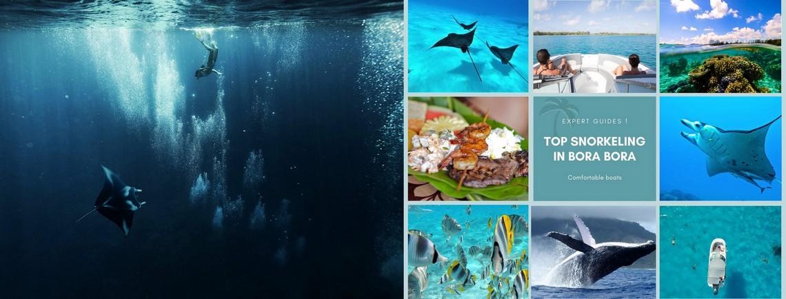https://tahititourisme.com/wp-content/uploads/2017/08/reef-discovery-bora-bora.jpg