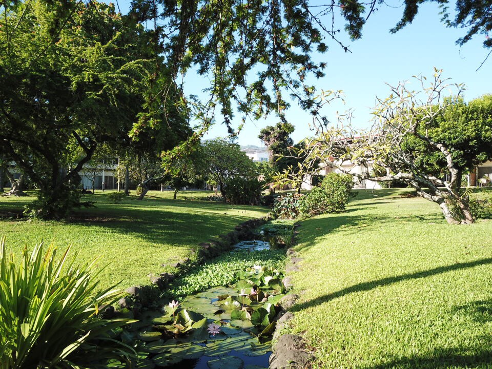 https://tahititourisme.com/wp-content/uploads/2017/09/jardin-vue-1.jpg