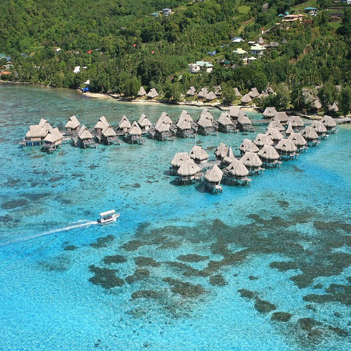 Limited Best Seller Tahiti, Moorea, Bora Bora