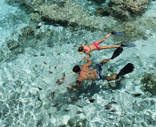 https://tahititourisme.com/wp-content/uploads/2018/04/Snorkelling-in-Tikehau.2-1.jpg
