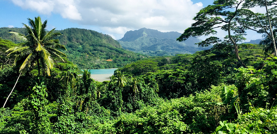 https://tahititourisme.com/wp-content/uploads/2018/05/ACTIVITES-TERRESTRES-Green-Tours-Huahine-2.jpg