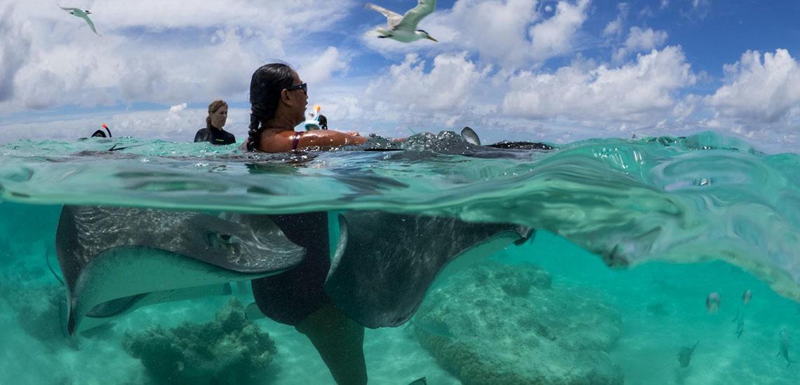 https://tahititourisme.com/wp-content/uploads/2018/06/captain-taina-moorea-snorkel-ray-tour-1140x550.jpg
