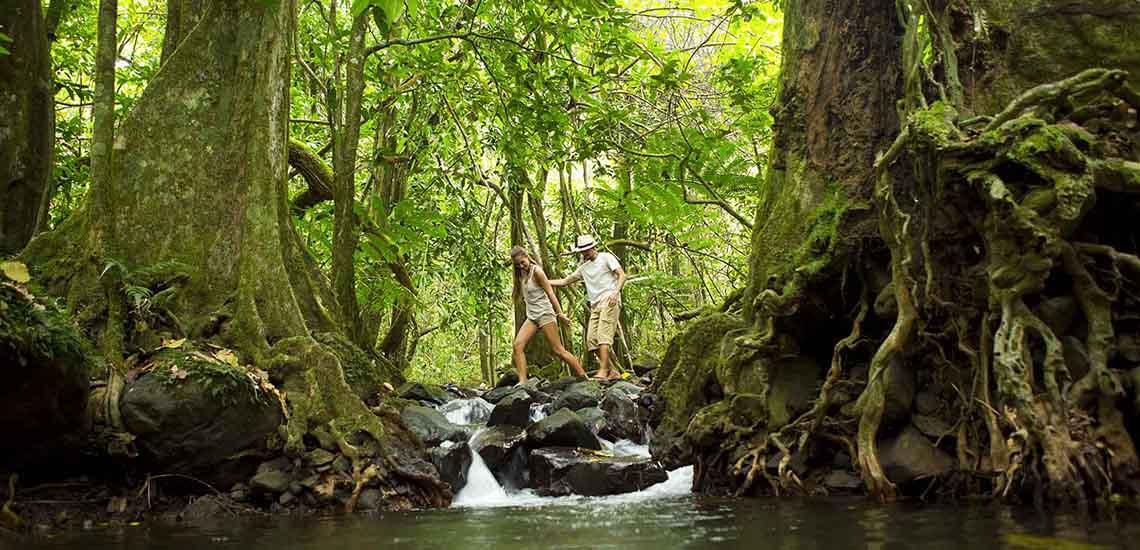 https://tahititourisme.com/wp-content/uploads/2018/07/Moorea-Hiking-1140x550.jpg