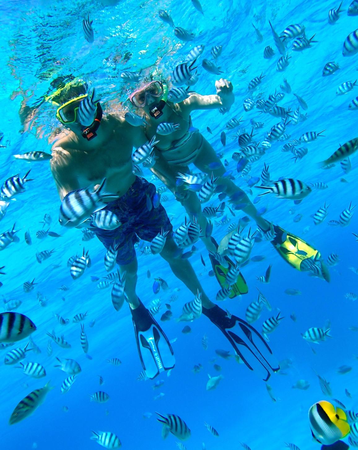 https://tahititourisme.com/wp-content/uploads/2018/12/Bora-Pure-Snorkeling-2.jpg