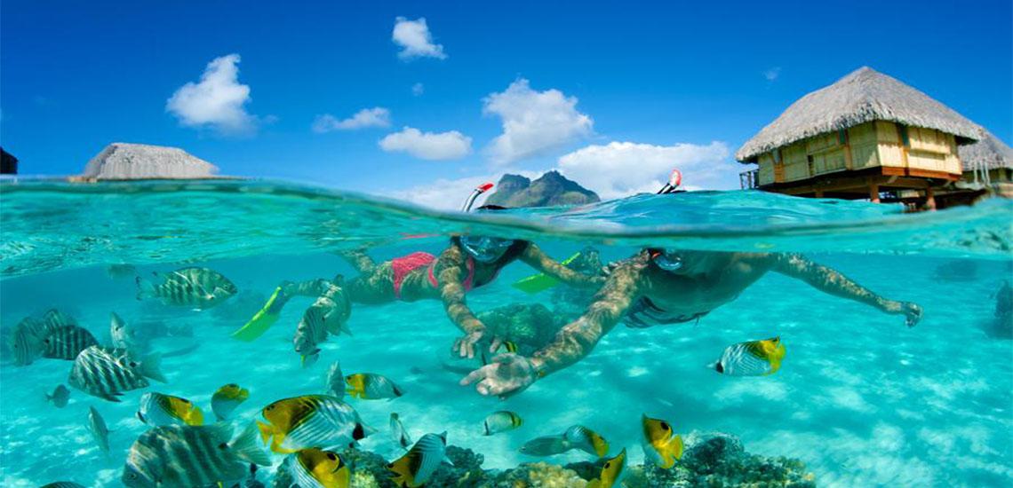 https://tahititourisme.com/wp-content/uploads/2019/01/bora-bora-pearl-beach-resort-spa-snorkeling-coral-1140X550.jpg