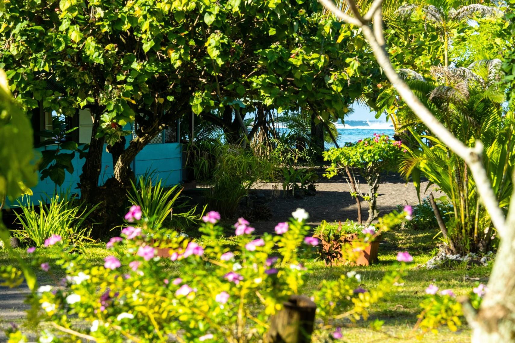 https://tahititourisme.com/wp-content/uploads/2019/08/copie-tahiti-tourisme-800ko-1.jpg
