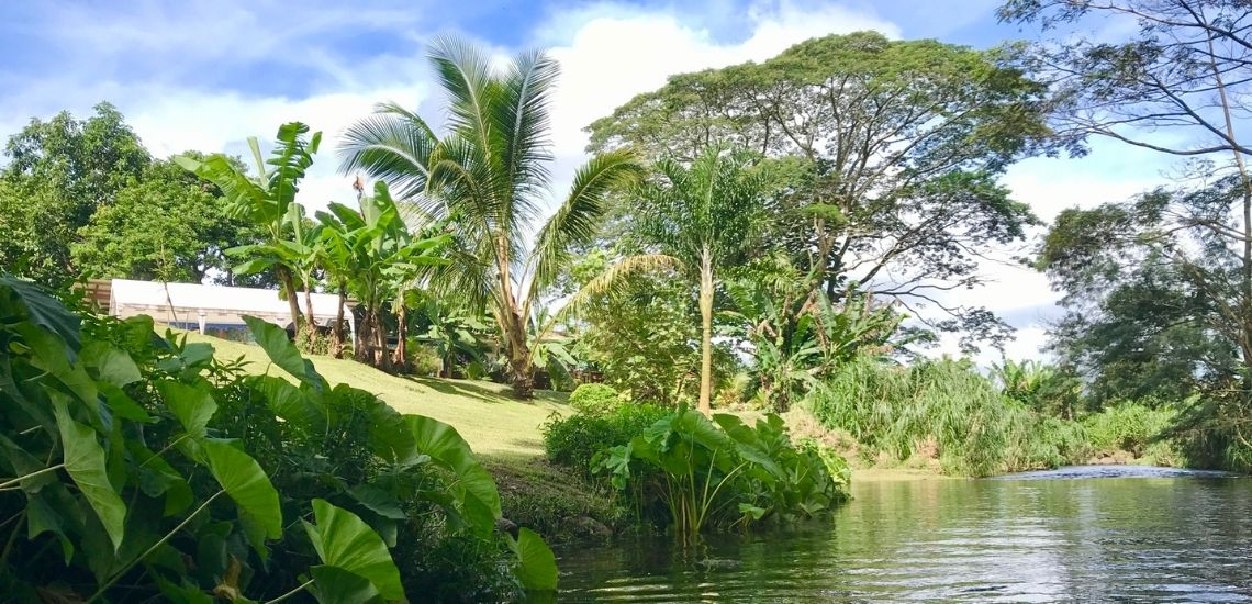 https://tahititourisme.com/wp-content/uploads/2020/03/Teanavai_Camping_1140x5550px.jpg