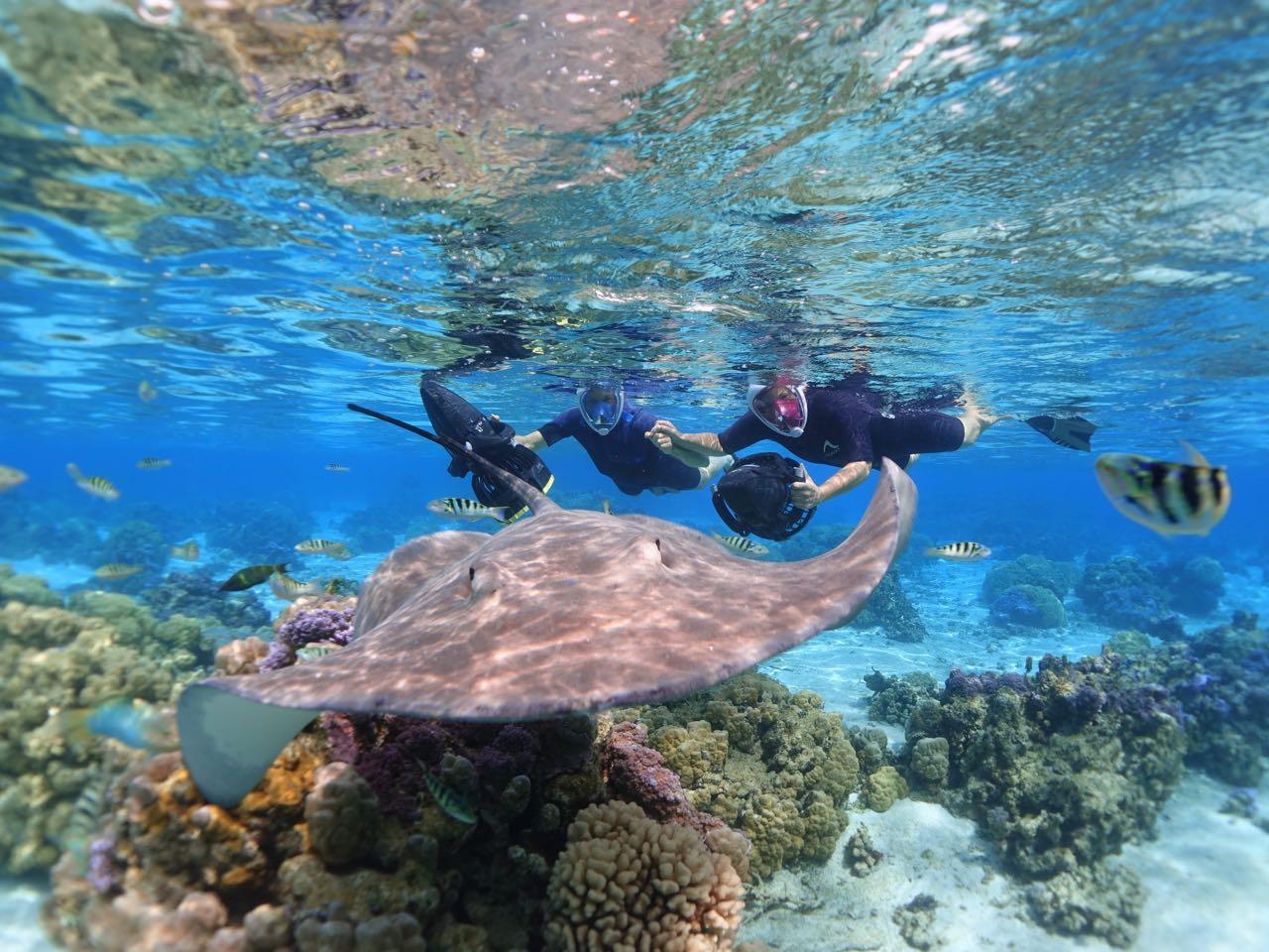 https://tahititourisme.com/wp-content/uploads/2020/09/Sea-Scooter-Snorkeling-Tour-à-moorea-copie-2.jpg