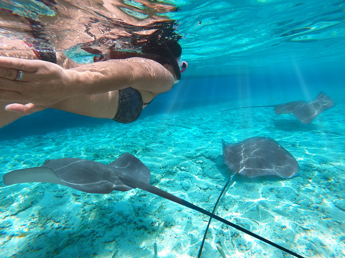 https://tahititourisme.com/wp-content/uploads/2020/11/Lagoon-Srvice-Bora-Bora-2.jpg