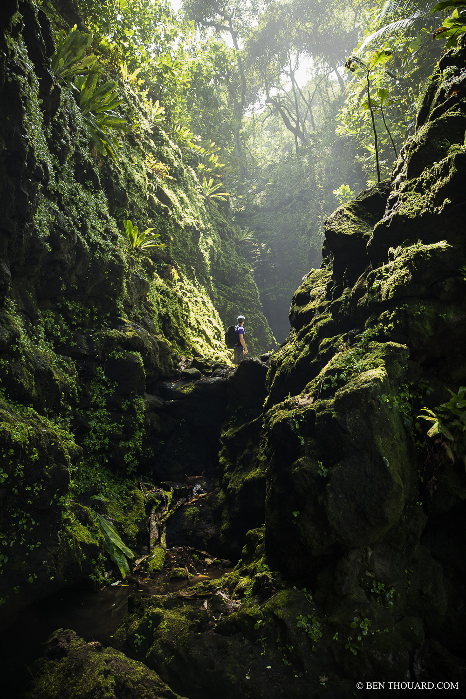 https://tahititourisme.com/wp-content/uploads/2021/04/benthouard_tepari_hike_0242.jpg